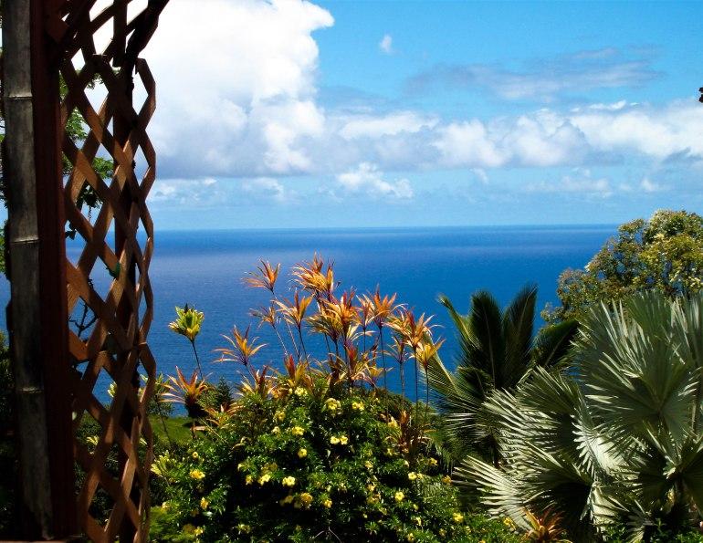 hawaii 061 (2)
